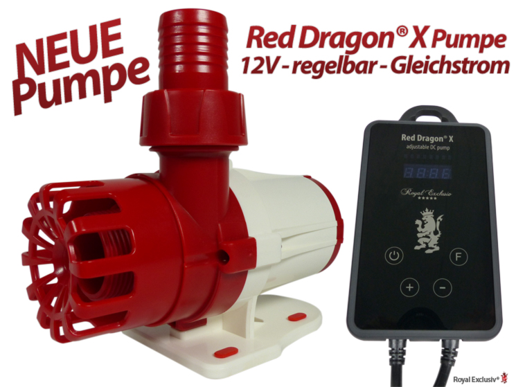 Royal Exclusiv Red Dragon X neue Pumpen Serie
