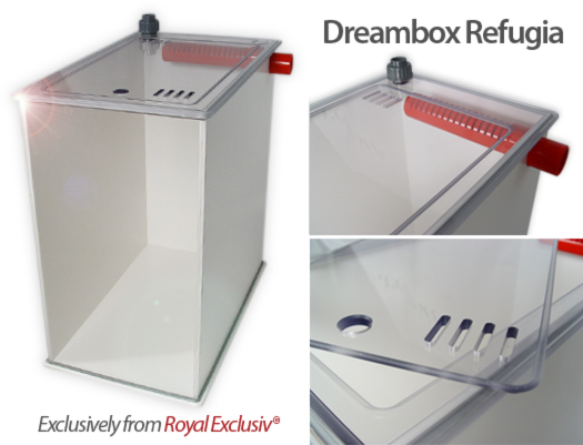 Dreambox Refugia
