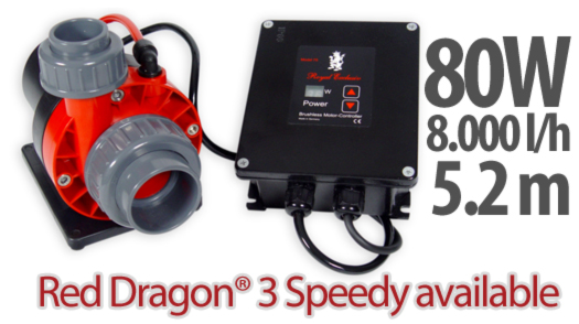 Red Dragon 3 Speedy