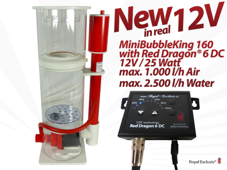Royal Exclusiv Red Dragon 6 Aquabee Mini Bubble King 160 advance order pre-order