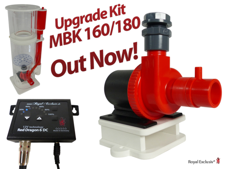 Upgrade Kit MBK 160 MBK 180 Red Dragon 6
