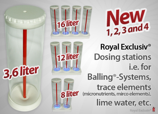 Royal Exclusiv dosing station feeder